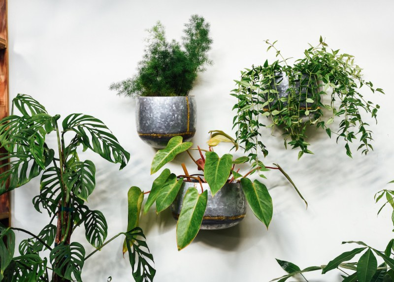 living wall with planters