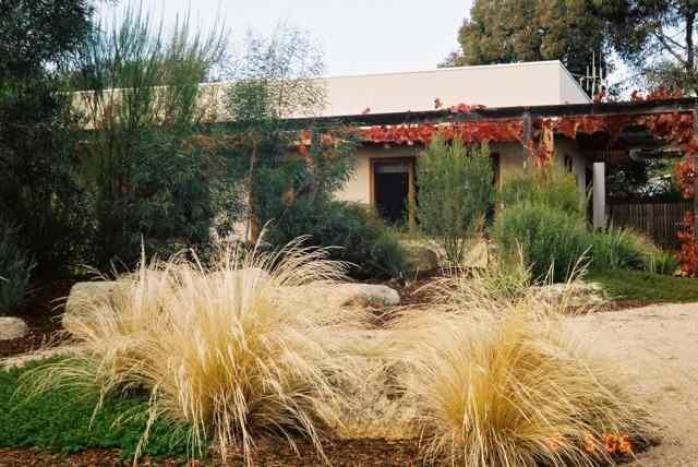 munro court native garden