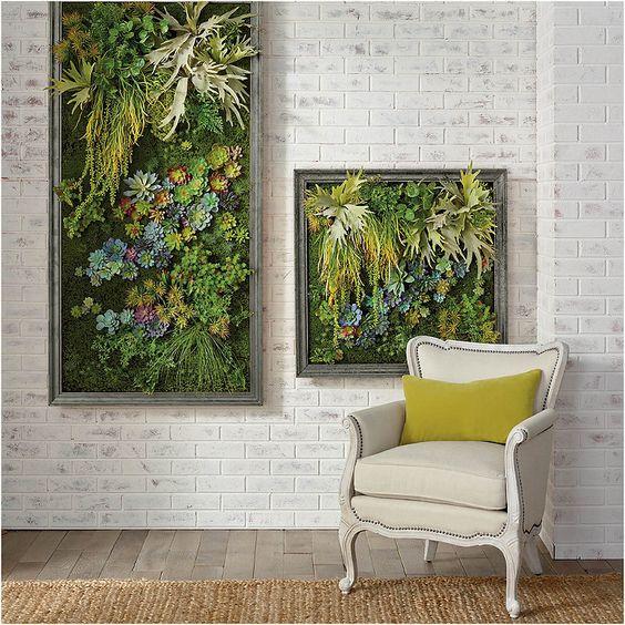 succulent artworks