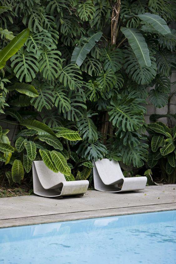 tropical vertical garden