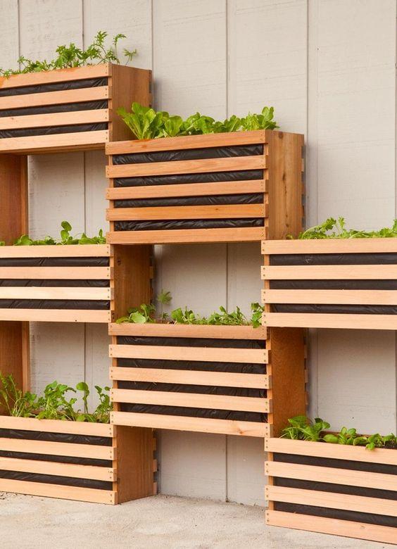 vertical vegie garden