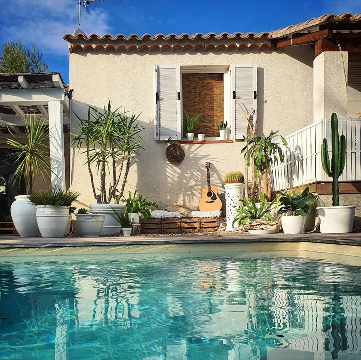 Desert inspired pool landscaping