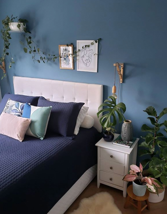 Bedroom with platns