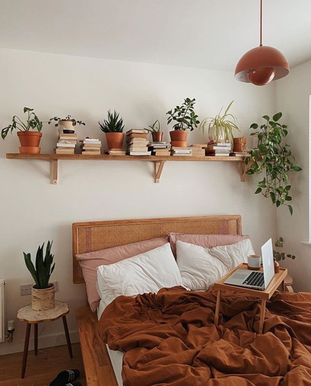 Plants in bedroom
