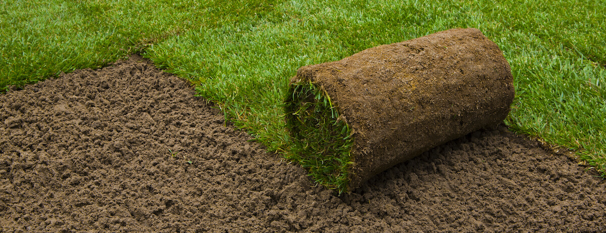 How to lay turf in your garden