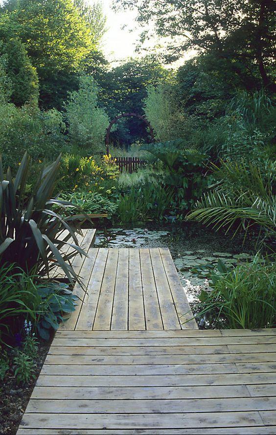 lush foliage surrounding backyard ponds