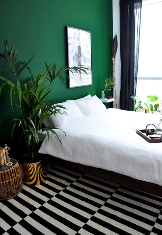 mid green accent wall