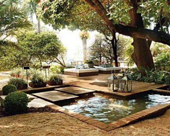 tranquillity of backyard ponds