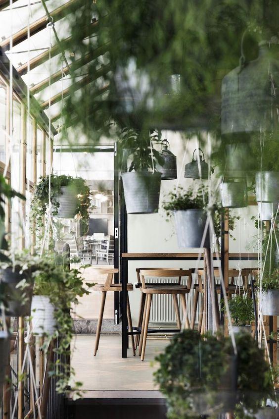 greenery and wood