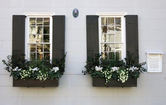 black and white window box