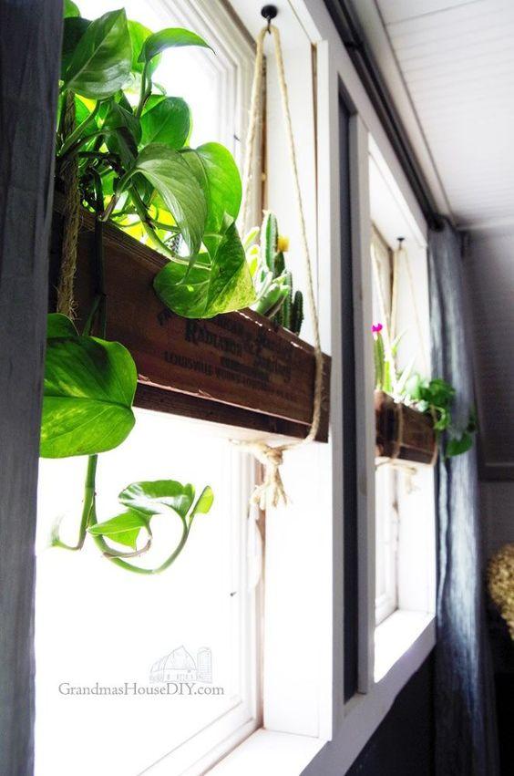 inside window boxes