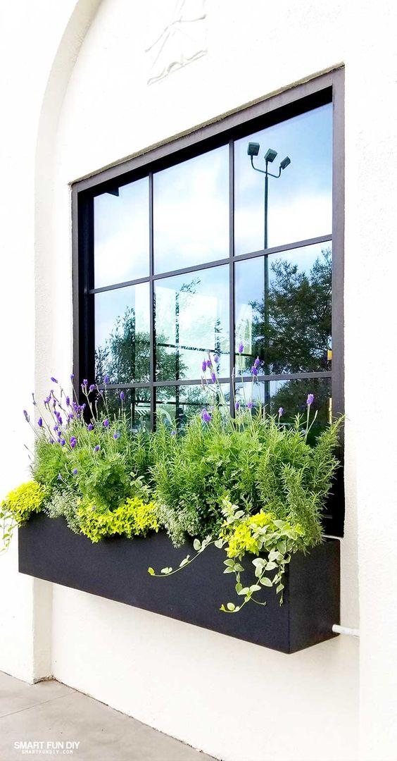 magnolia window box