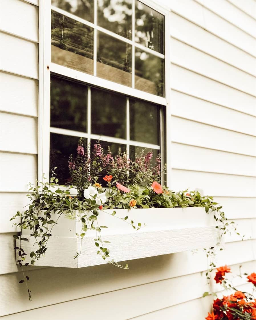 white window box