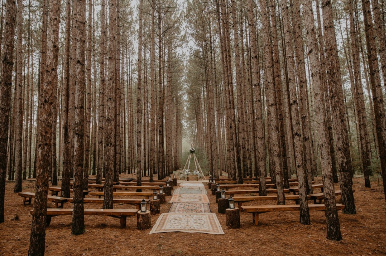 rustic wedding in forest with bench seating
