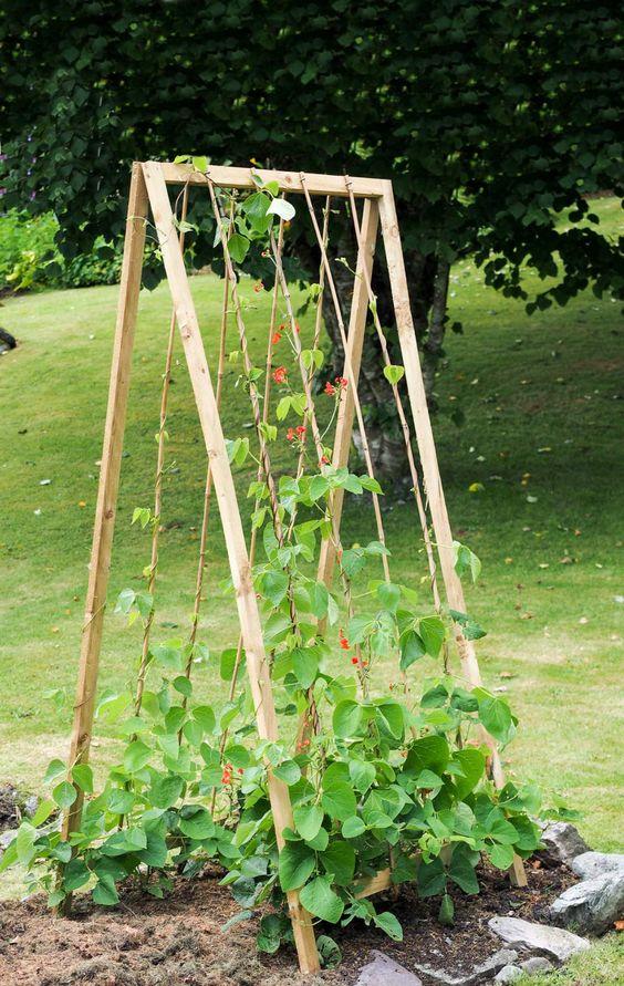 a shaped climbing frame