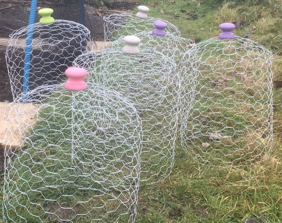 chickenwire for birds