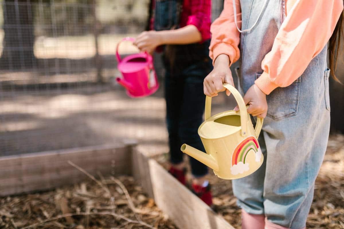 garden allotment kids