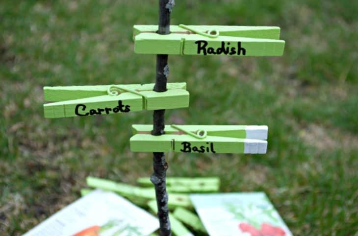DIY peg garden markers for allotment