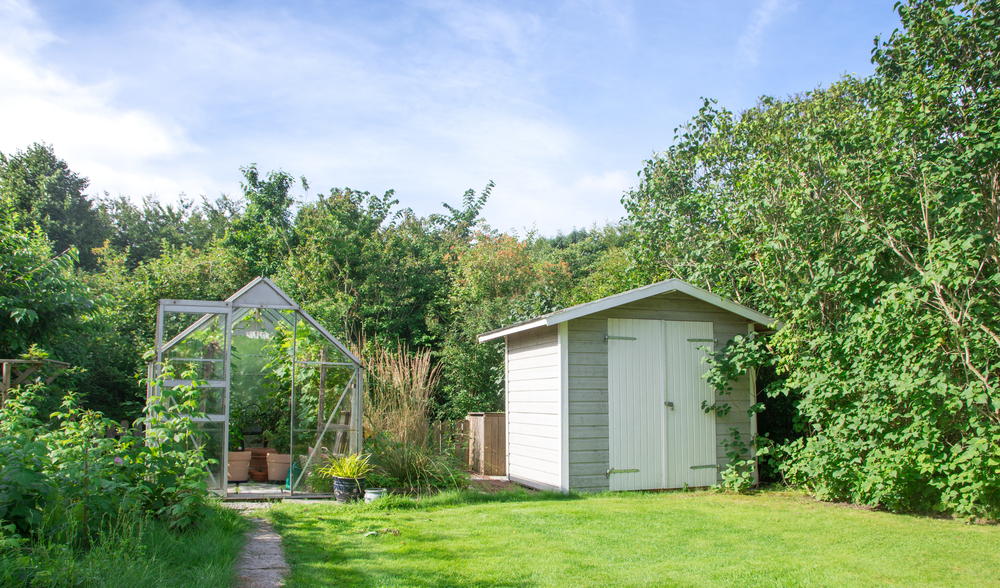 lush garden with shed