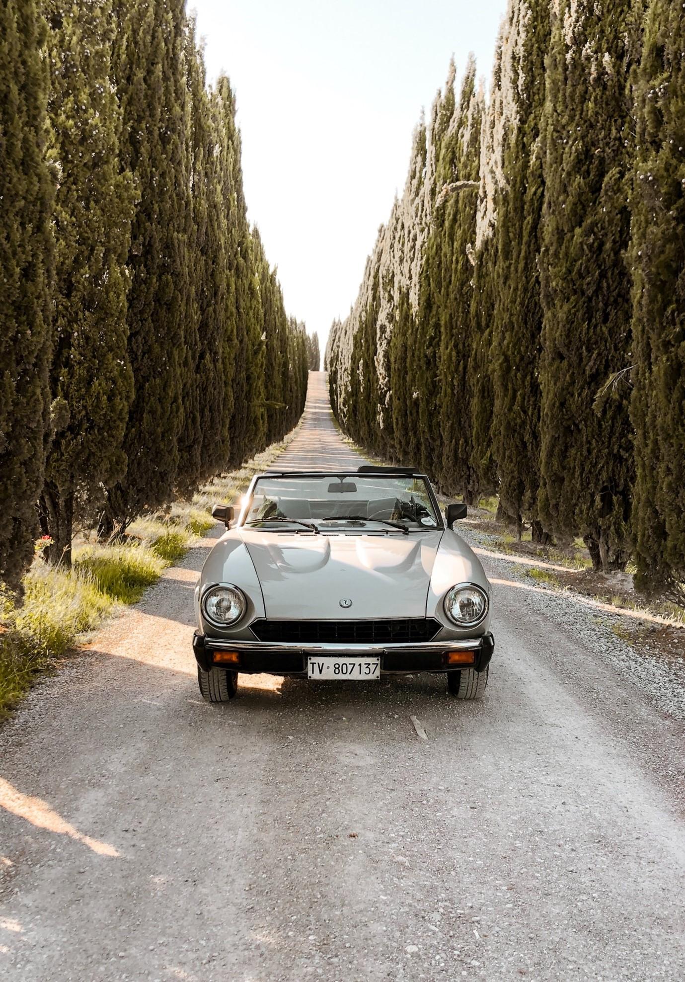 driveway-ideas-long-gravel-drive