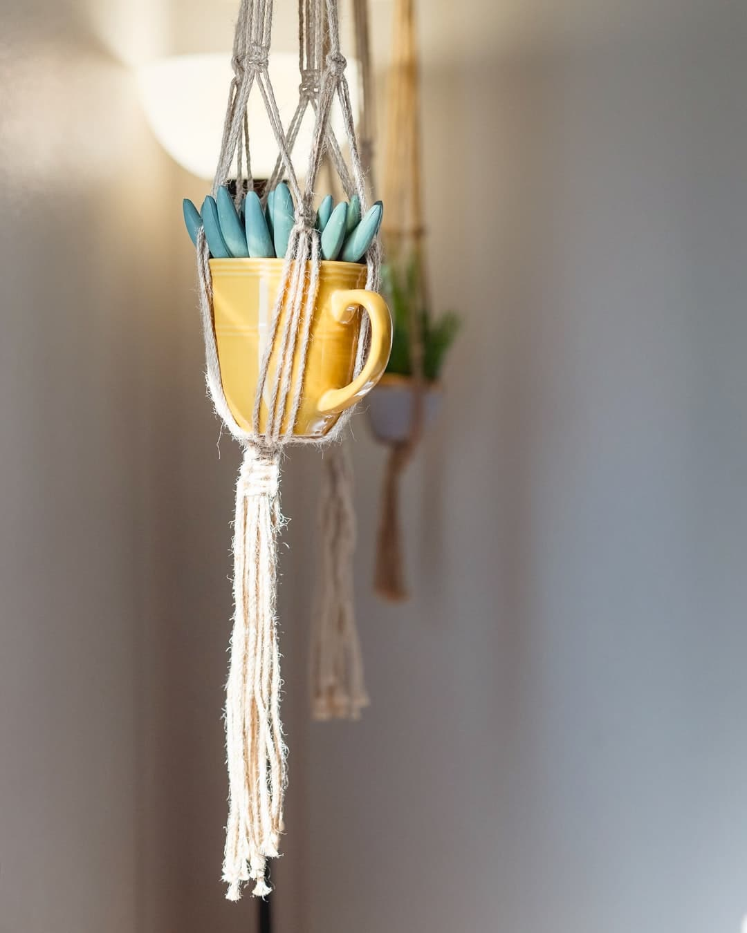 How to create the very best macrame plant hanger DIY
